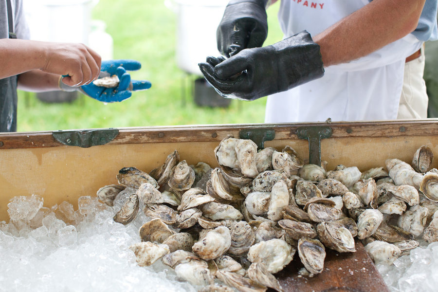 How to Shuck an Oyster 2