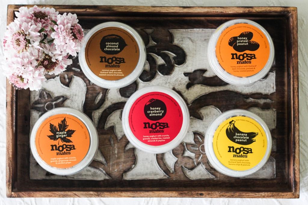 noosa mates yoghurt flavors 1024x683 - Noosa Mates