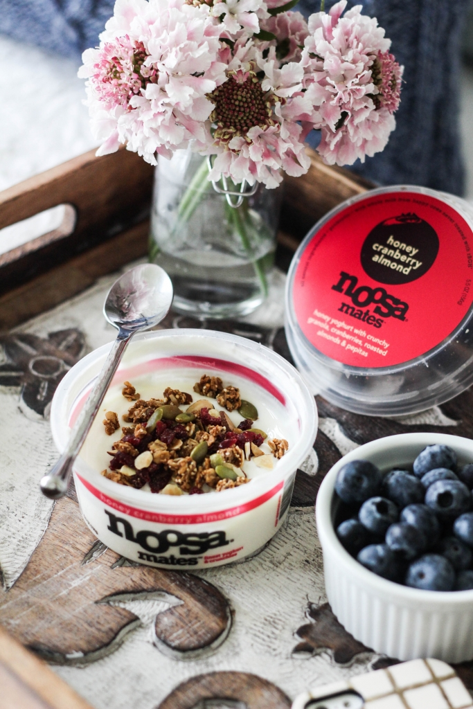 noosa mates yoghurt honey cranberry almond 1 683x1024 - Noosa Mates
