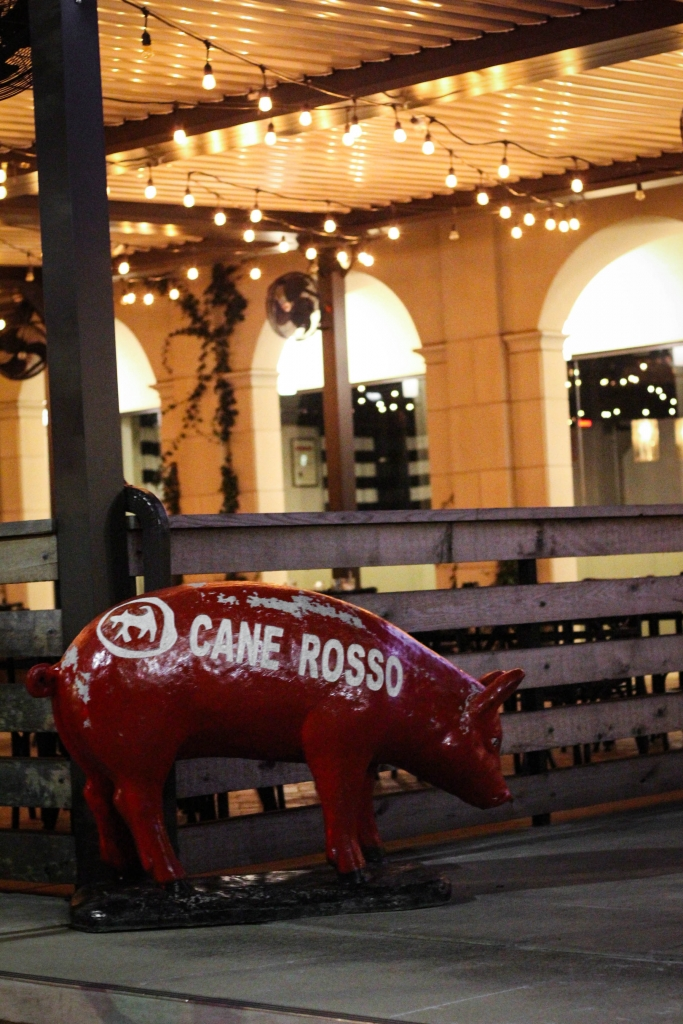 Cane Rosso Montrose  683x1024 - Cane Rosso: Traditional Italian with a Texas Flare