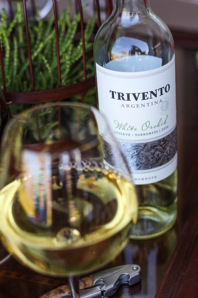 Soccer BBQ and Trivento Wine 1 2 683x1024 - Entertaining: Soccer, BBQ, and Trivento Wine